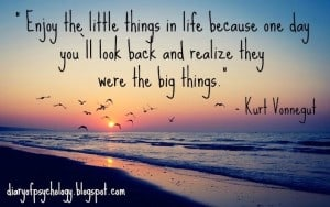 Enjoy the little things - inspirational life quote