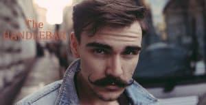Grow a mustache - the handlebar